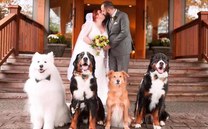 shandess-wedding
